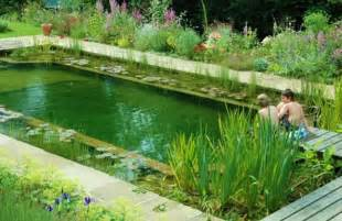 Natural Pool by Natural Pools Or Swimming Ponds Nifty Homestead