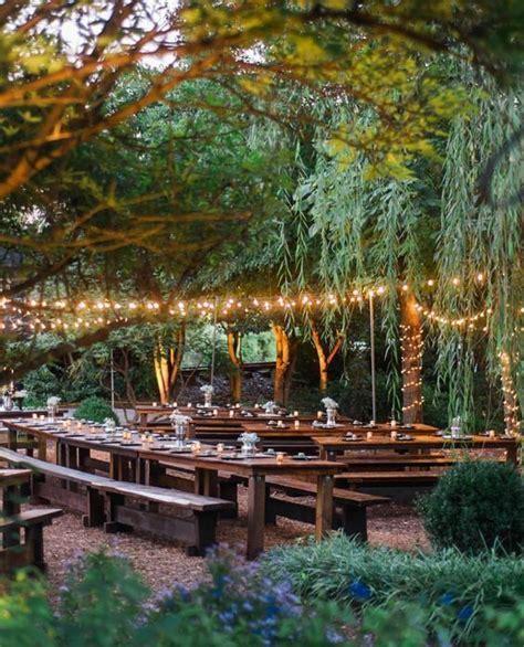 Best 25  Garden roses wedding ideas on Pinterest   Rose