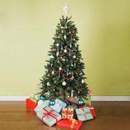 how to keep your tree alive how to keep your tree alive trees