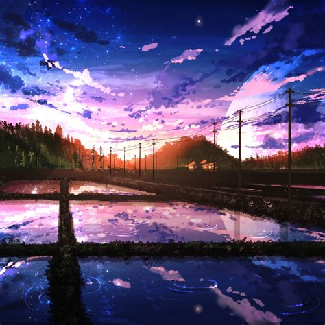 beautiful sunrise clouds scenery paddy field anime