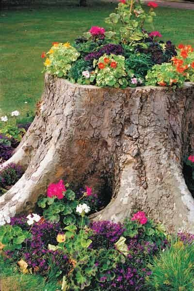 tree stump planter l flowers garden garden