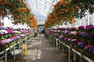 duthie park winter gardens corridor winter gardens 169 bob embleton cc