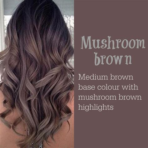 ways to dye hairstyles for men with short hair mushroom brown hair pinterest mushrooms brown and