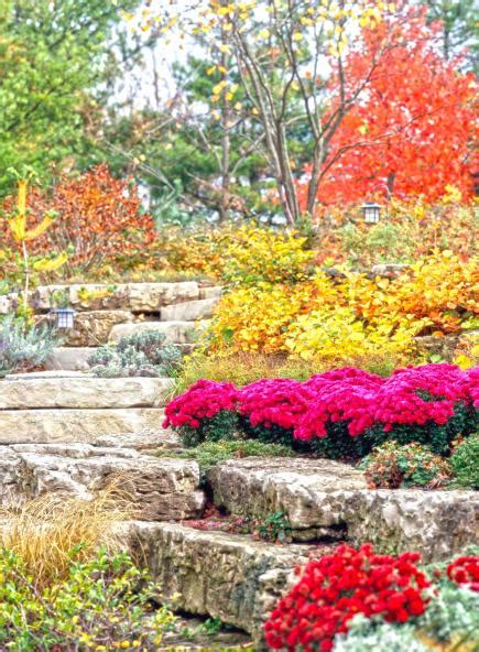 Fall Bargains by 7 Fall Garden Bargain Tips Midwest Living