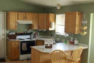 Good Colors To Paint Kitchen Cabinets by The Kitchen Transformation Part 1 Overview Of Rustoleum