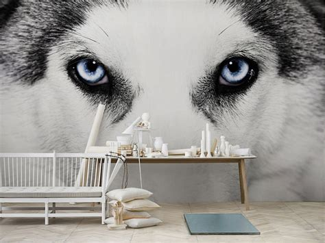 cool bedroom murals cool wolf wall murals