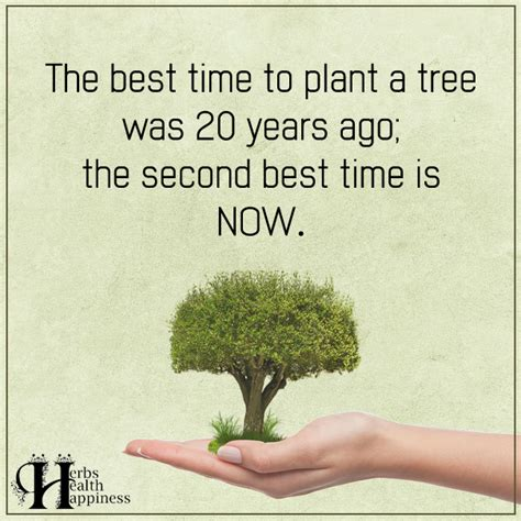 the best time to plant a tree 248 eminently quotable