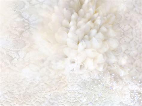 Wedding Background White by Wedding Background Wallpaper Wallpapersafari