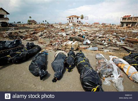 earthquake indian ocean body bags and debris after the indian ocean earthquake and
