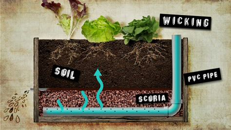 Wicking Planter Box by Gardening Australia Fact Sheet Building A Wicking Bed