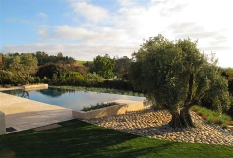 country pool design with a modern twist luxury pools