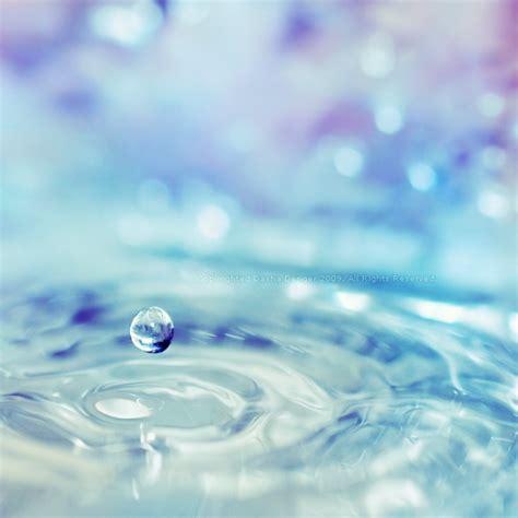 Beautiful Water Drops Macro Photography   Designzzz