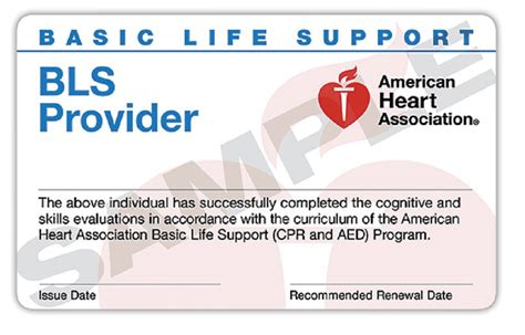 2016 american association cpr card template delanco ems cpr class delanco emergency squad