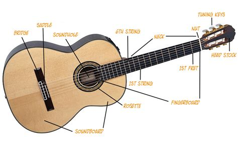 Buying A Classical Guitar How To Buy A Classical Guitar
