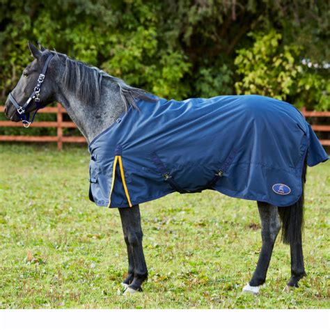 skipton 100g turnout rug firefoot international