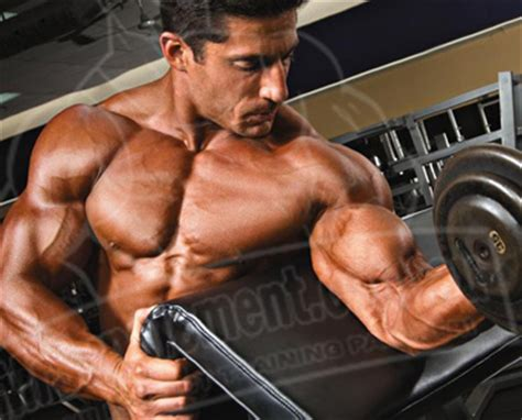 creatine overdose creatine how to take dosage loading side effects