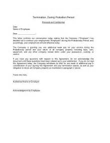 letter employment probation job appointment for new