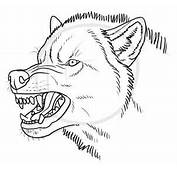How To Draw An Angry Wolf Step By Forest Animals