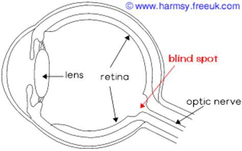 Explain Blind Spot eye magic the blind spot explained