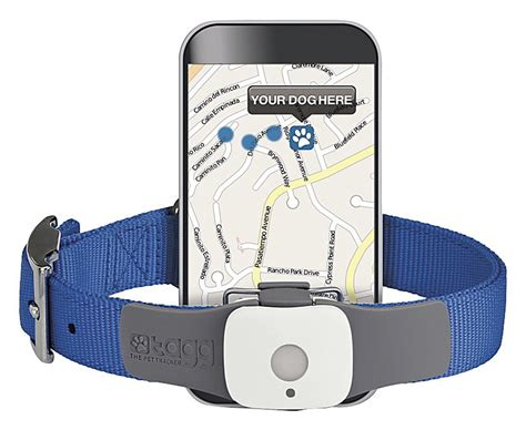 pet tech collar tech is going to the dogs healthy paws pet insurance