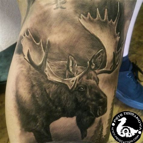 moose tattoos 25 best ideas about moose on wildlife