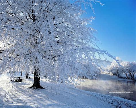 imagenes de paisajes nevados image gallery montana s paisajes con nieve