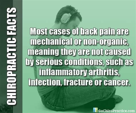 8 Facts On by 15 Facts About Chiropractic Care Chiropractic Connection