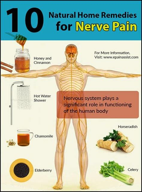 nerve home remedies 10 home remedies for