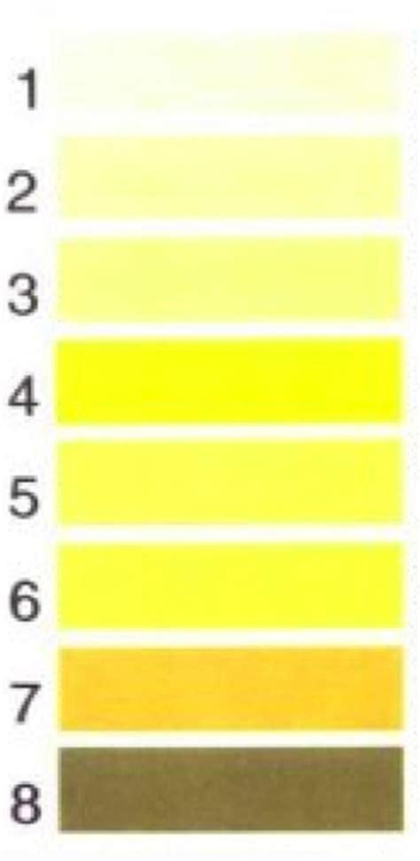 energy drink urine color thompson health gt health services gt rehabilitation