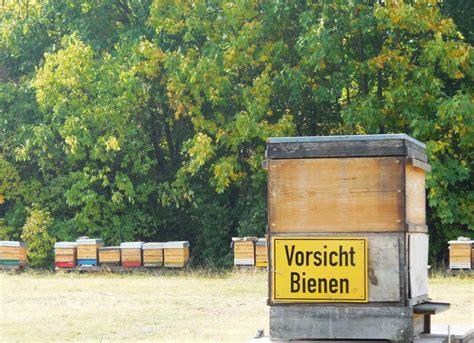botanischer volkspark pankow cafe mint ferientipps f 252 r berliner und brandenburger reiseblog