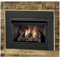 Salter Fireplace by Home Use Green Propane Inc