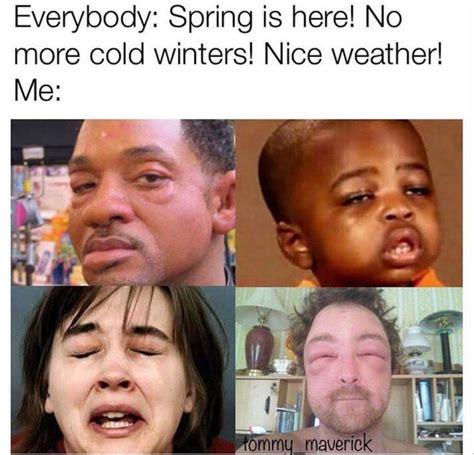 Allergy Meme - the 25 best allergy memes ideas on pinterest being sick