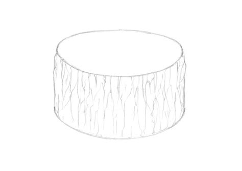 How To Draw A Tree Stump Step By Step