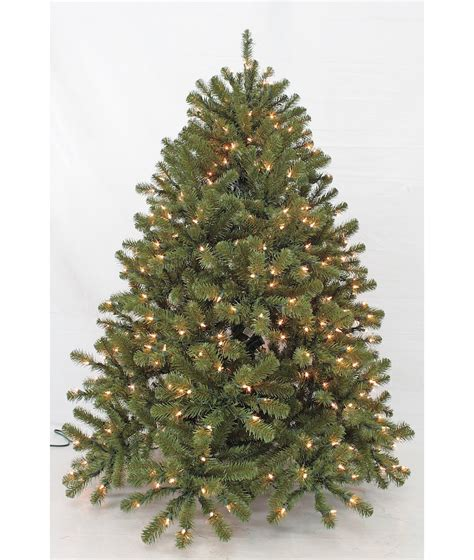 pool city christmas trees best 28 black forest tree best 28 black forest tree forest trees black