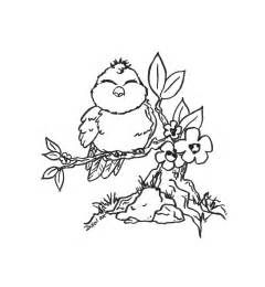 cute bird flowers branch coloring pages pinterest