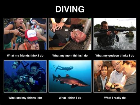 Scuba Diving Meme - diving what my friends think i do memes pinterest