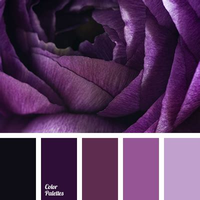 purple color palette purple color palette ideas