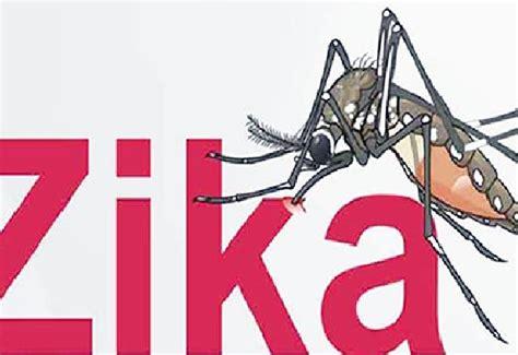 imagenes de niños con zika virus del zika fundaci 243 n carlos slim