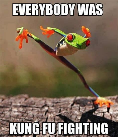 Everybody Was Kung Fu Fighting by Kung Fu Quotes And Sayings Quotesgram