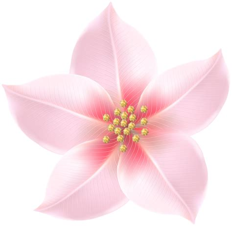 Transparant Pink Decorative pink flower decorative transparent image gallery yopriceville high quality images and