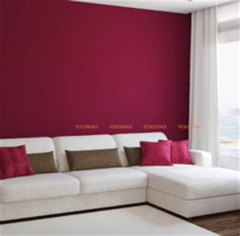 colour combination for hall images interior paint color scheme ideas