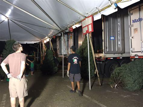 tajiri christmas trees hawaii tajiri s richard trees 37 photos 37 reviews trees 1110