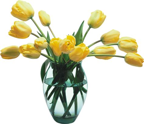 Flower Vase Png by Glass Vase With Yellow Tulips Gallery Yopriceville