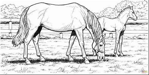 Coloring Pages Of Realistic Horses