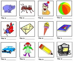 Identify the picture and complete the sentence using a or an