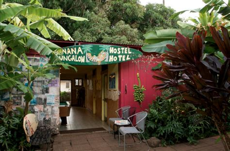 banana bungalow hostel banana bungalow