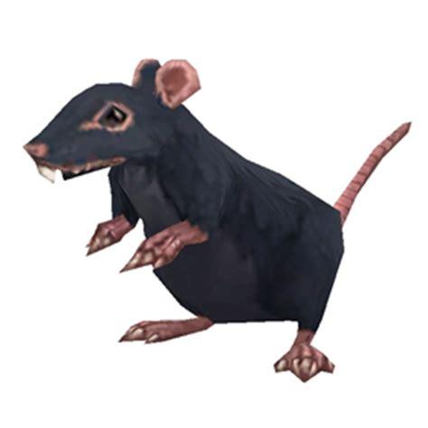 fjord rat fjord rat wow battle pet