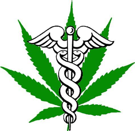 nuova palermo sede marijuana therapy liberty inaugura una nuova sede a