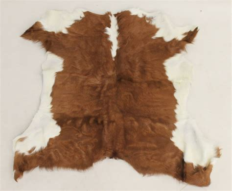 calf hide rugs calfskin rug cowhide cow hide skin leather calf calfhide white fur carpet ebay