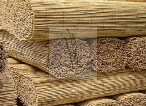 Reed Matting by Reed Fence Polished Reed Mat Buy Reed Fence Reed Blinds